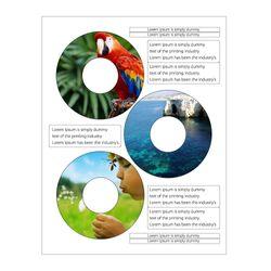 Etiquetas-Auto-Adesivas-Para-CDDVD-Fastlabel-3-Branco-Fosco